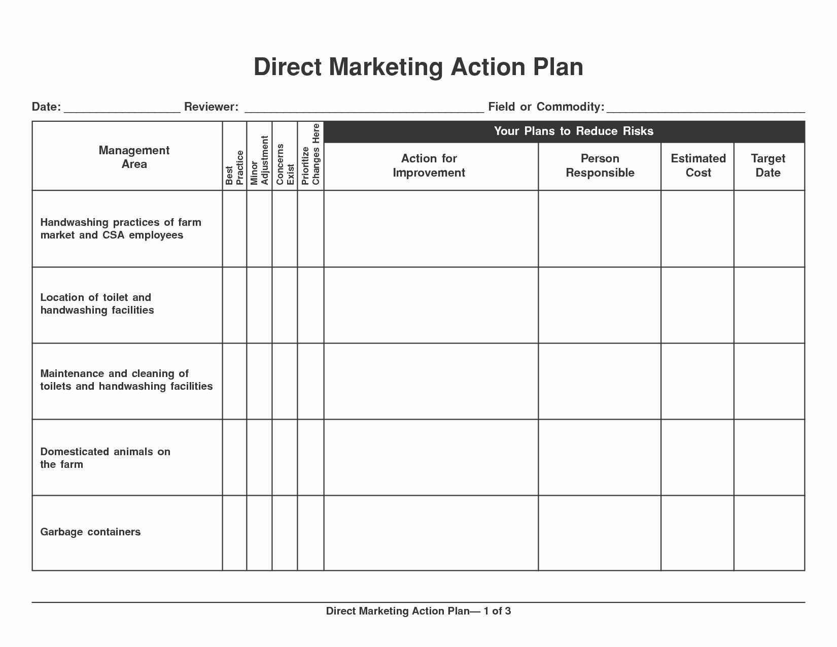 Marketing Action Plan Template Luxury 6 Marketing Action Plan Templates Excel Website