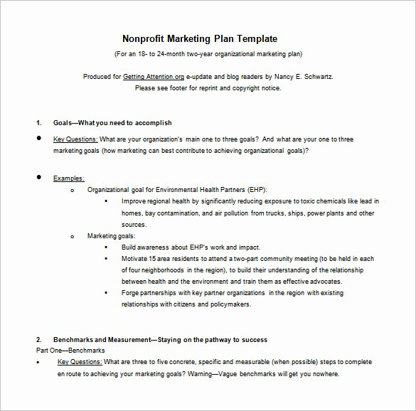 Marketing Action Plan Template Luxury 8 Marketing Action Plan Templates Doc Pdf