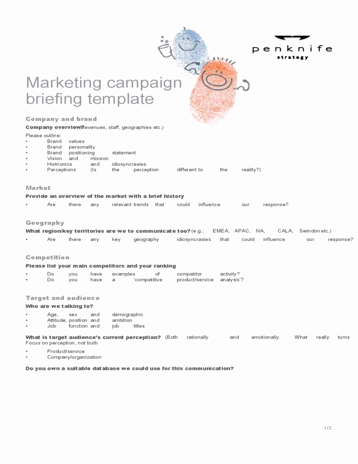 Marketing Campaign Plan Template Best Of Marketing Campaign Template