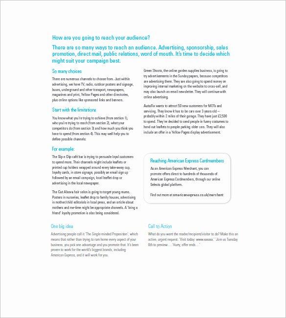 Marketing Campaign Plan Template Fresh Marketing Campaign Plan Template 11 Free Sample