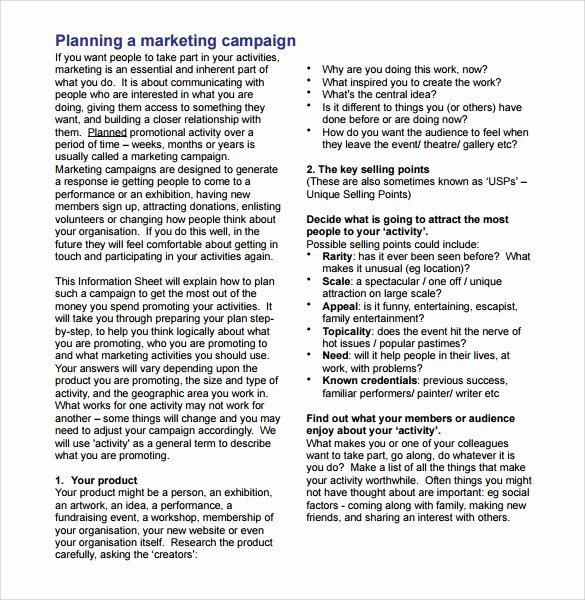 Marketing Campaign Plan Template Inspirational 9 Sample Marketing Campaign Templates