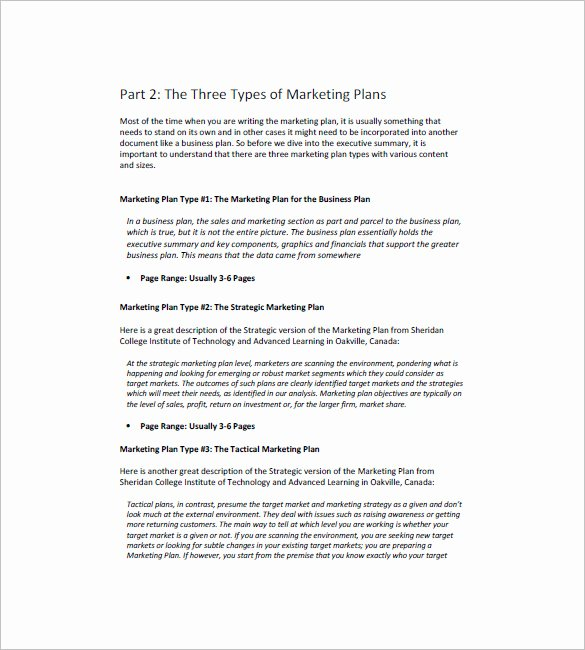 Marketing Campaign Plan Template Lovely 14 Marketing Campaign Plan Templates Doc Excel Pdf