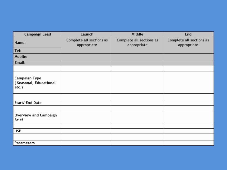 Marketing Campaign Plan Template Lovely Marketing Campaign Template