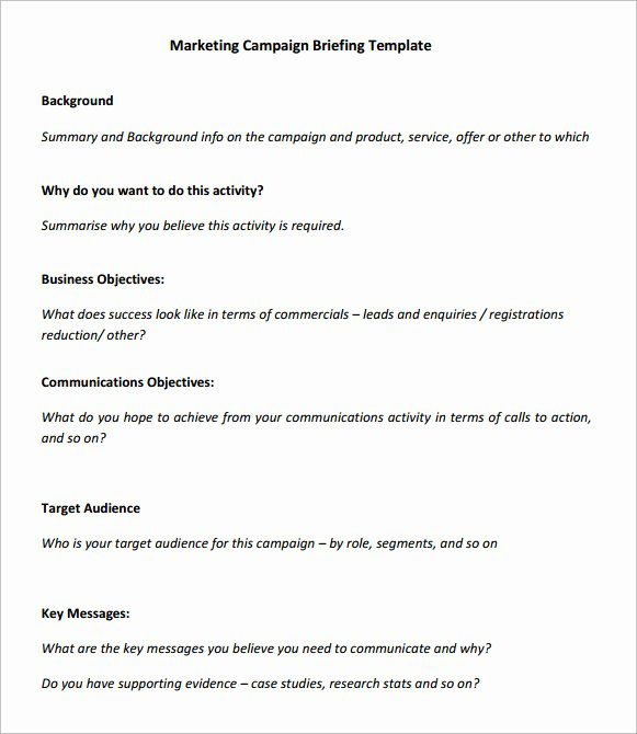Marketing Campaign Plan Template New 7 Marketing Campaign Samples