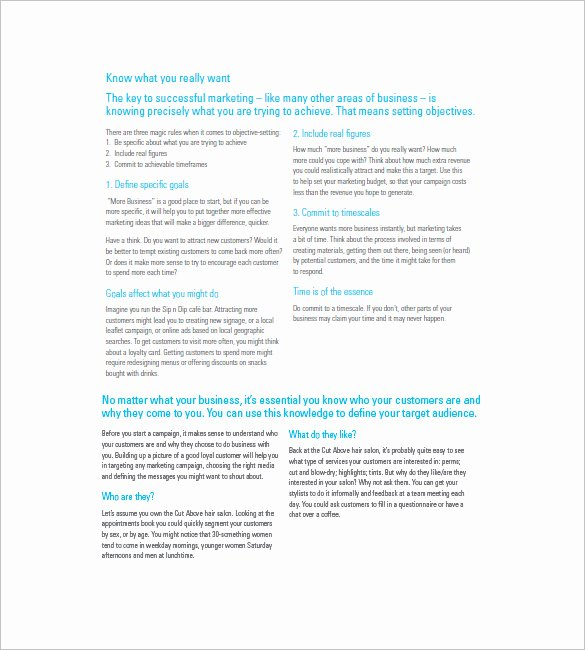 Marketing Campaign Proposal Template Awesome 14 Marketing Campaign Plan Templates Doc Excel Pdf