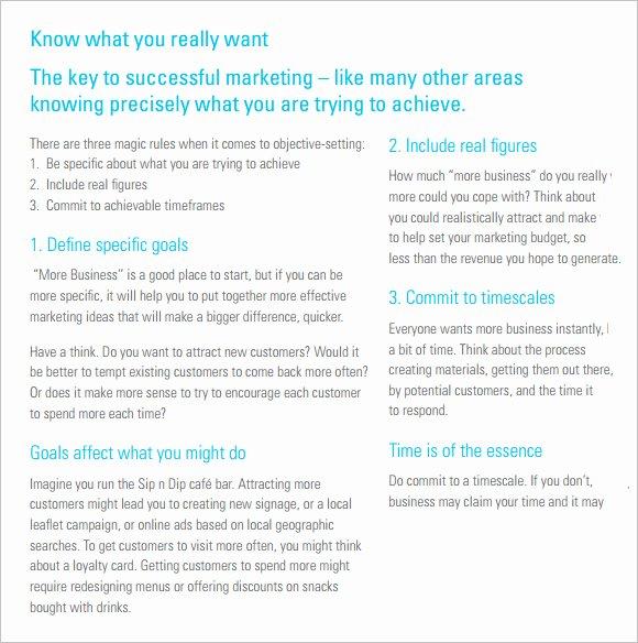Marketing Campaign Proposal Template Elegant 9 Sample Marketing Campaign Templates