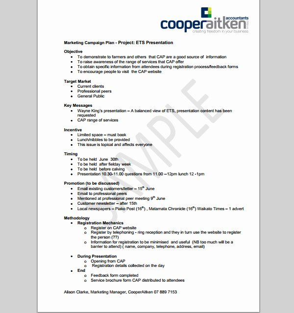 Marketing Campaign Proposal Template Inspirational Marketing Campaign Template