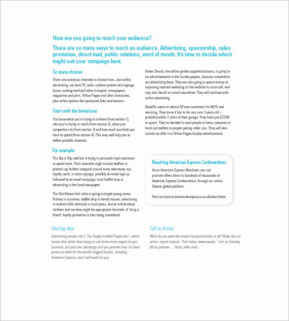 Marketing Campaign Proposal Template Lovely Marketing Campaign Plan Template 11 Free Sample