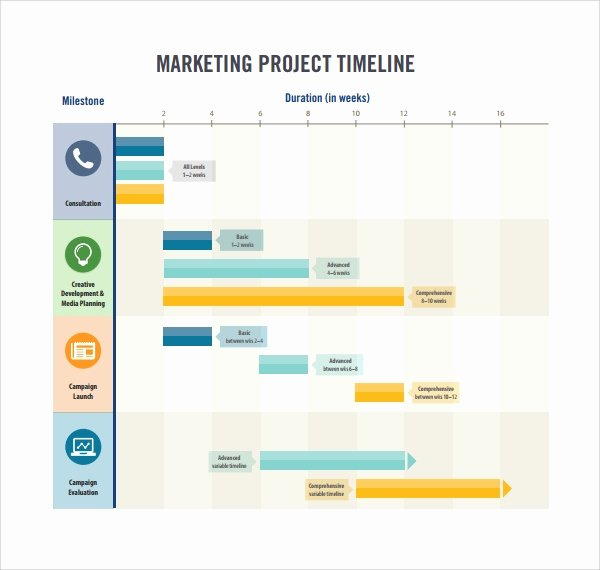 Marketing Campaign Timeline Template Elegant Sample Marketing Timeline Template 6 Free Documents In