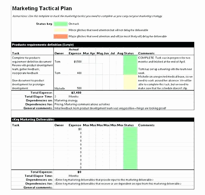 Marketing Launch Plan Template New Product Launch Marketing Plan Template Product Launch Plan