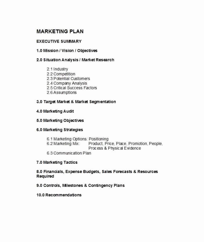 Marketing Plan Outline Template Elegant 30 Professional Marketing Plan Templates Template Lab
