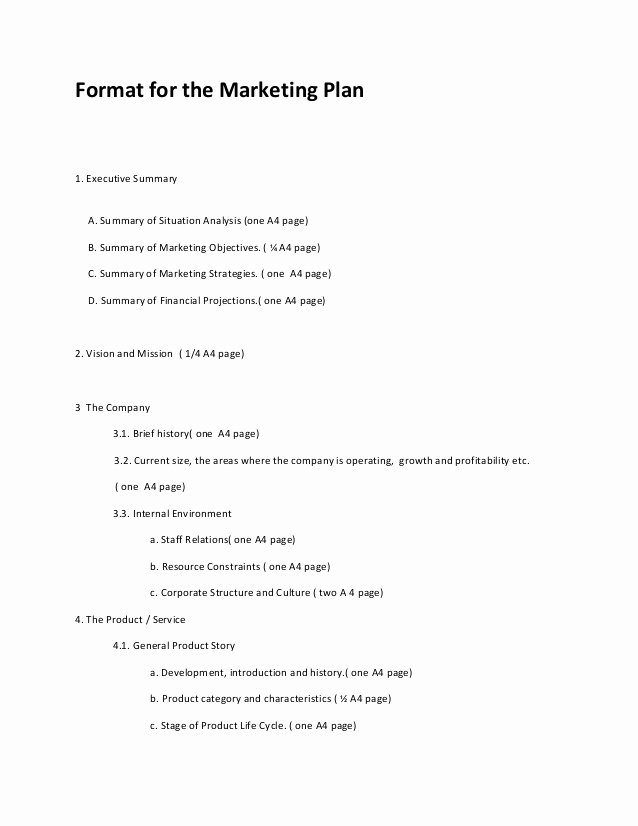 Marketing Plan Outline Template Elegant Marketing Plan format 2013