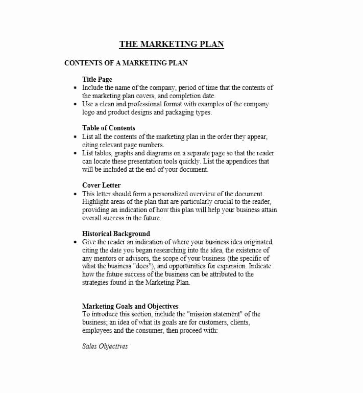 Marketing Plan Outline Template Fresh 30 Professional Marketing Plan Templates Template Lab
