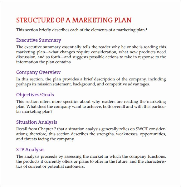 Marketing Plan Outline Template Fresh 8 Marketing Analysis Samples