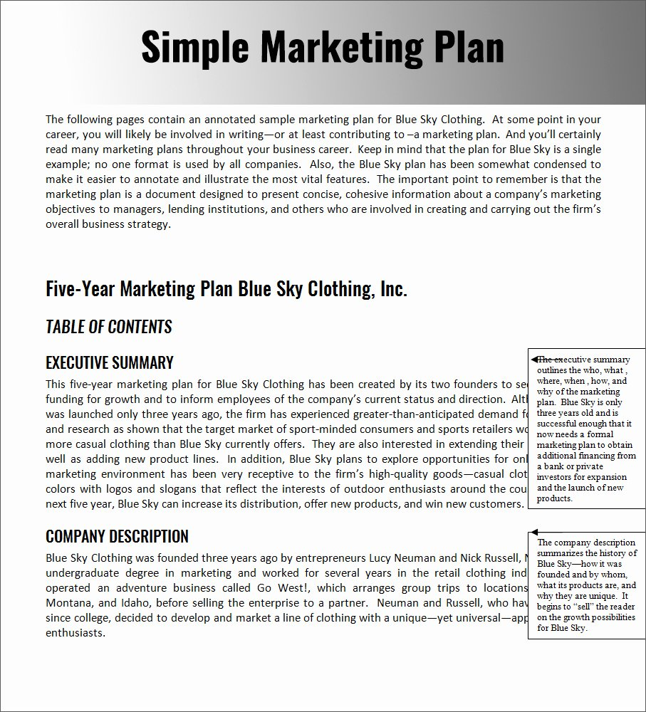 Marketing Plan Template Pdf Beautiful Marketing Plan Template Word