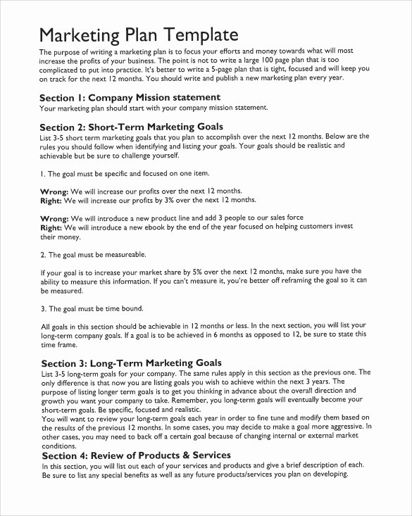 Marketing Plan Template Pdf Inspirational 15 Marketing Action Plan Templates to Download for Free