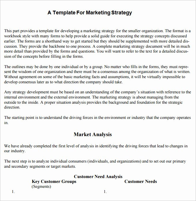 Marketing Plan Template Pdf Inspirational Strategic Marketing Plan Template 10 Free Word Pdf