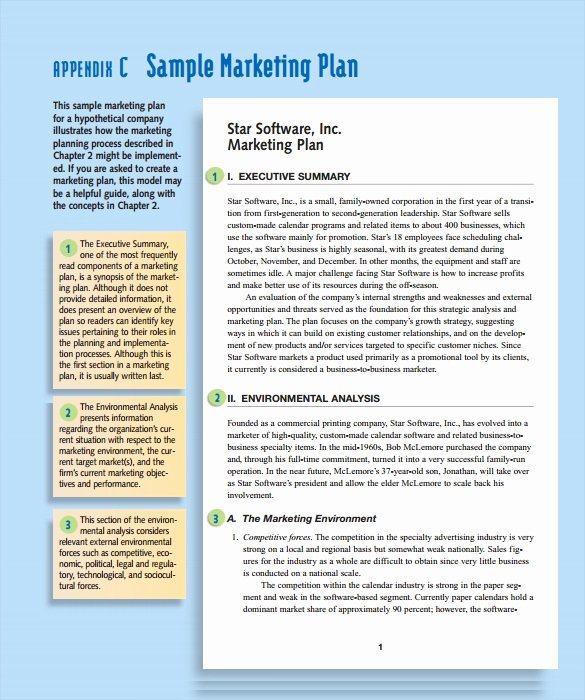 Marketing Plan Template Pdf Unique 15 Marketing Action Plan Templates to Download for Free