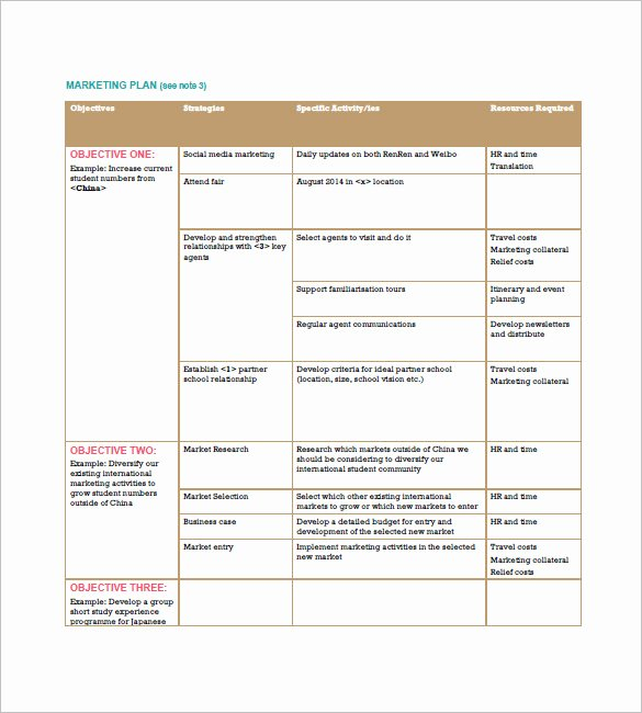 Marketing Plan Template Pdf Unique Marketing Plan Template 65 Free Word Excel Pdf format
