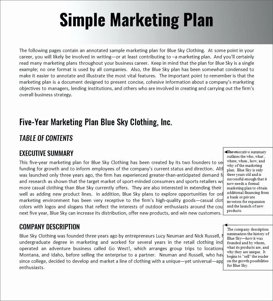 Marketing Plan Template Pdf Unique Template Example Marketing Plan Template