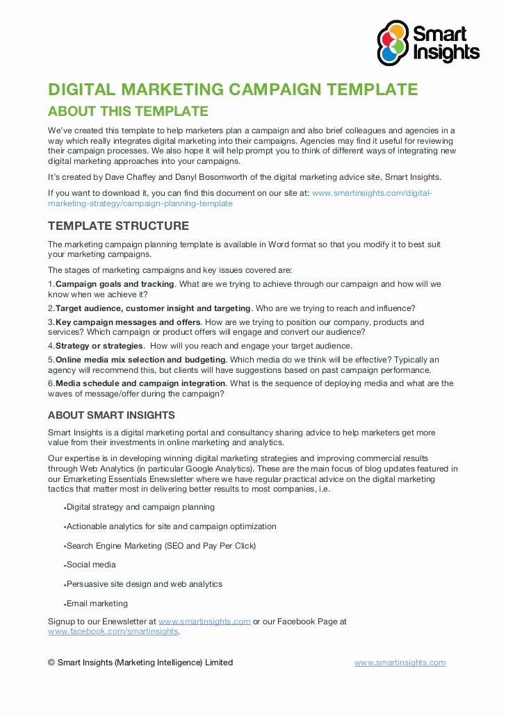 Marketing Proposal Template Word Awesome Digital Marketing Campaign Templateabout This Templatewe