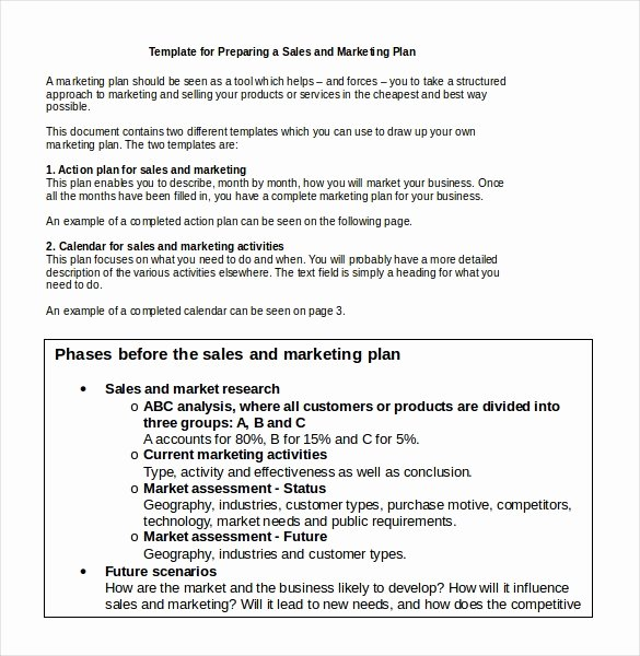 Marketing Proposal Template Word Best Of 33 Word Marketing Plan Templates Free Download
