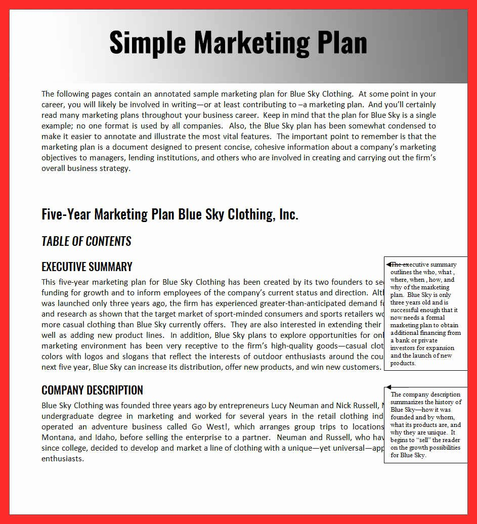 Marketing Proposal Template Word Unique Word Document Sample
