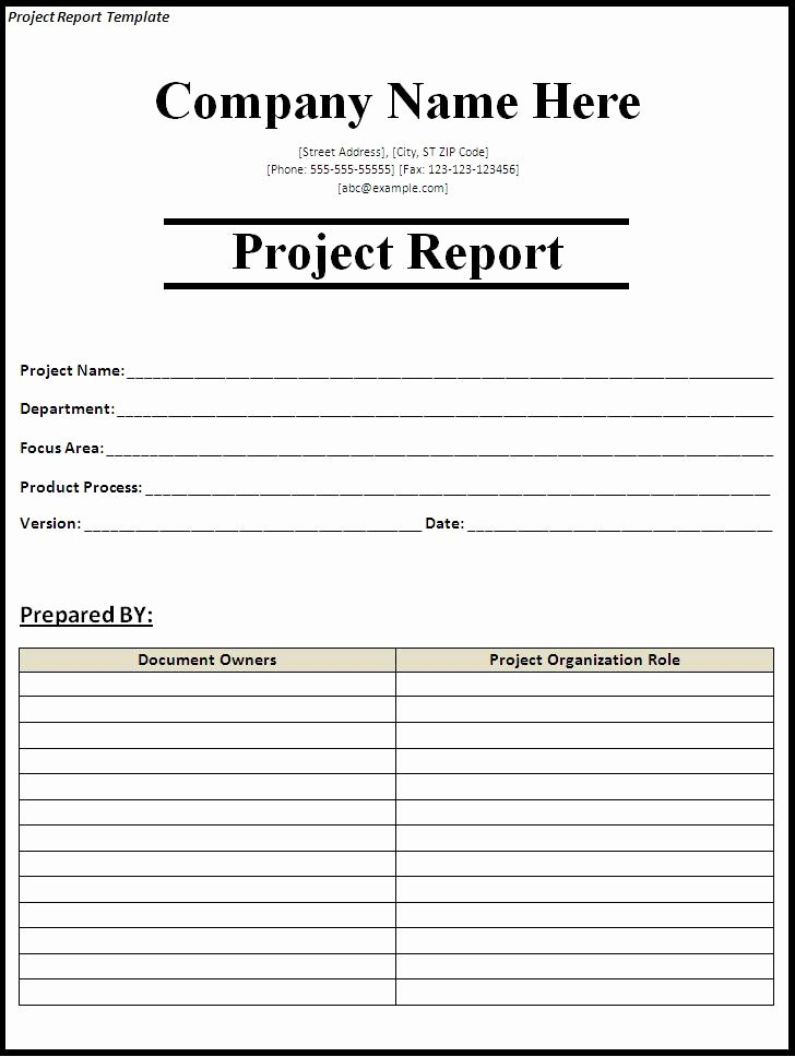 Marketing Report Template Word Elegant 15 Report Templates Excel Pdf formats