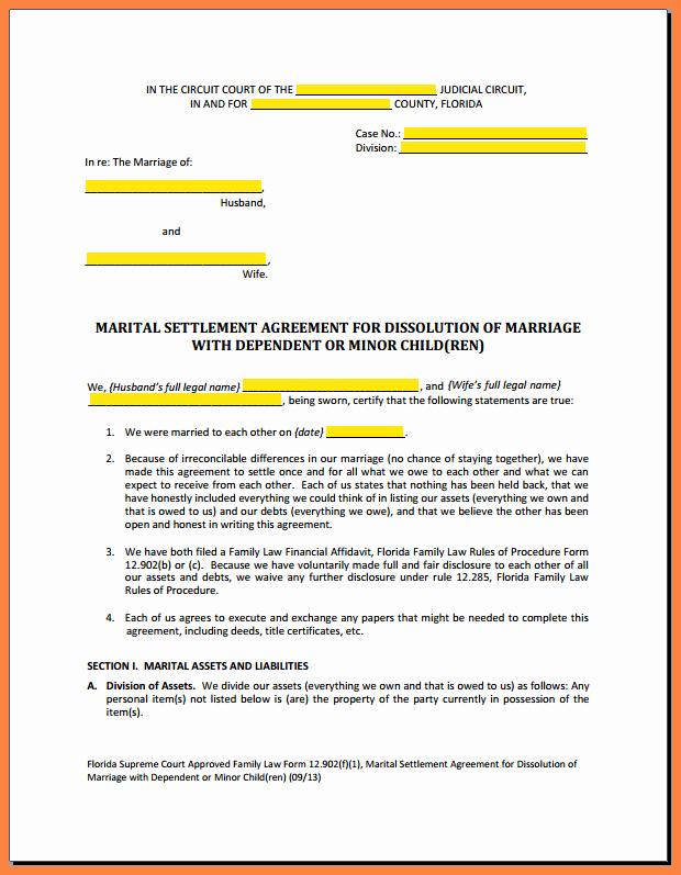 Marriage Settlement Agreement Template Elegant 9 Mediation Settlement Agreement Template