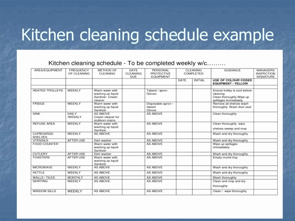 Master Cleaning Schedule Template Luxury Master Cleaning Schedule Template