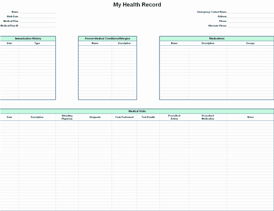 Medical Record forms Template Beautiful Personal Health Record