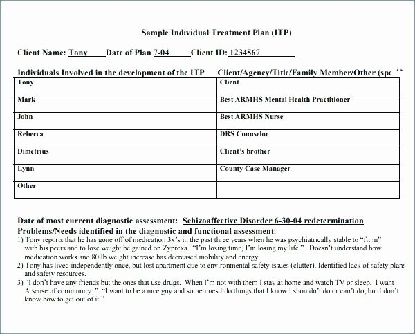 Mental Health Crisis Plan Template Awesome Poquet