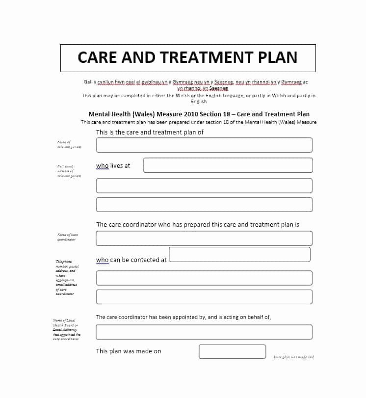 Mental Health Treatment Plan Template Awesome 35 Treatment Plan Templates Mental Dental Chiropractic