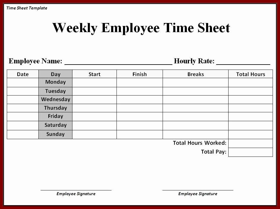 Microsoft Access Timesheet Template Unique Printable Timesheet Printable 360 Degree