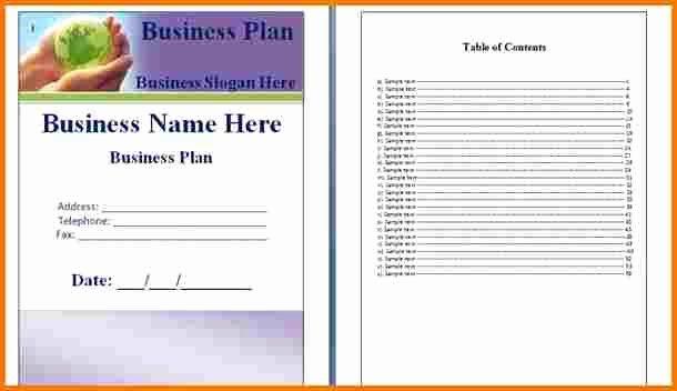 Microsoft Business Plan Template Luxury Microsoft Business Plan Template