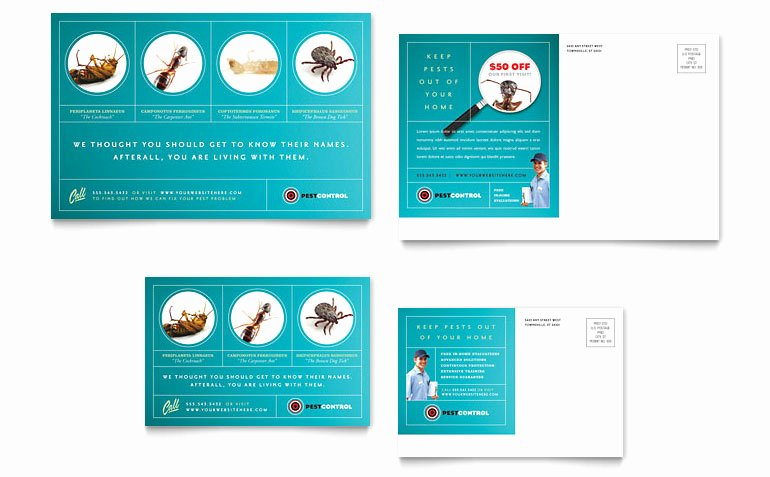 Microsoft Publisher Postcard Template New Pest Control Services Postcard Template Word & Publisher