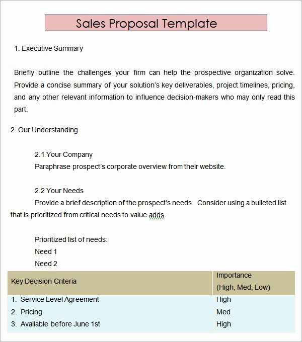 Microsoft Word Sales Proposal Template Beautiful 20 Sample Sales Proposal Templates – Pdf Word Psd