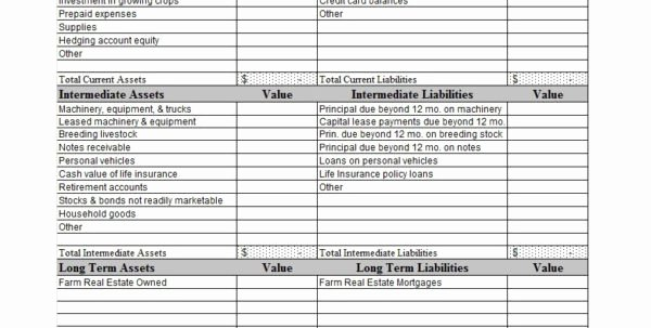 Monthly Balance Sheet Excel Template New Monthly Balance Sheet Template Excel Example Of Spreadshee