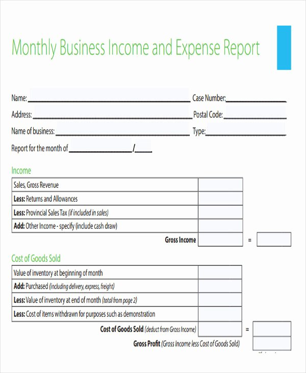 Monthly Income and Expense Template New 29 Expense Report Template In Pdf