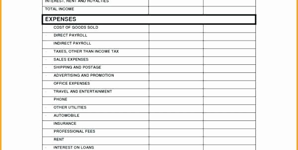 Monthly Income and Expenses Template Unique Project In E and Expense Statement Excel Monthly Profit