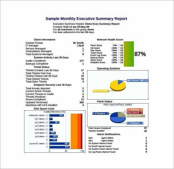 Monthly Report Template for Manager Awesome Executive Report Template 9 Free Word Pdf Documents