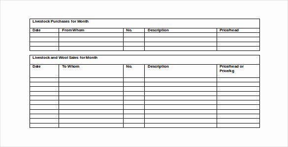 Monthly Report Template for Manager Best Of 48 Monthly Management Report Templates Pdf Doc Excel