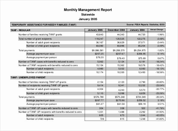 Monthly Report Template for Manager Inspirational Monthly Report Template