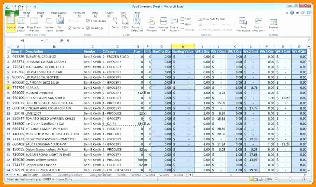 Ms Access Inventory Template Beautiful Blank Stock Inventory Control Template Keeping Excel