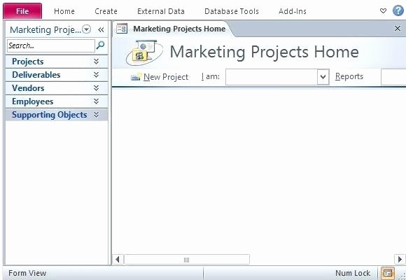 Ms Access Project Management Template Luxury Microsoft Access Project Tracking Template – Hafer