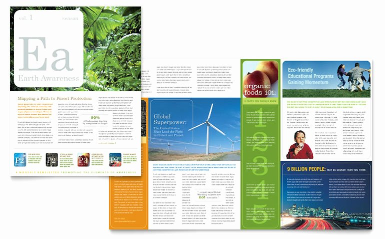 Ms Publisher Newsletter Template Fresh Environmental & Agricultural Non Profit Newsletter