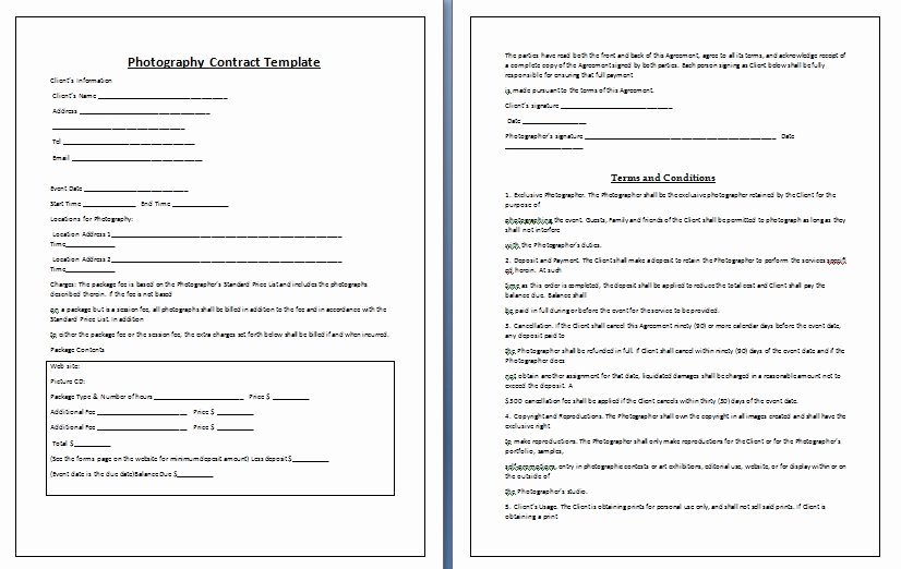 Ms Word Contract Template Unique Graphy Contract Template