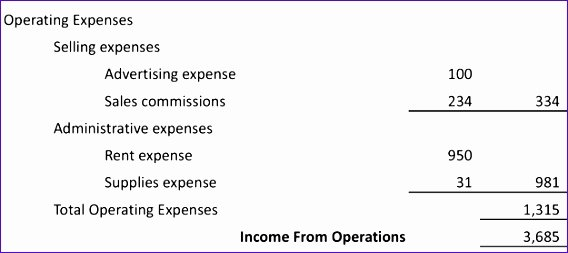 Multi Step Income Statement Template Best Of 10 Multi Step In E Statement Excel Template
