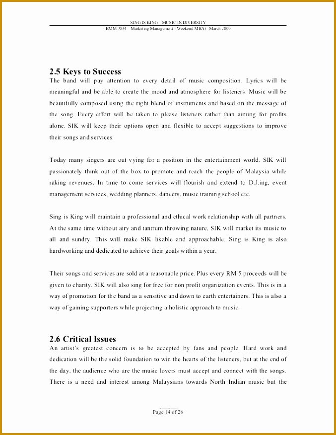 Music Marketing Plan Template Awesome 3 Music Business Plan Template