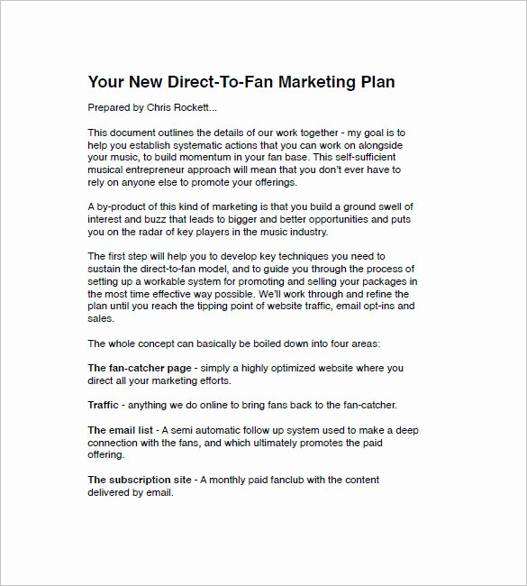 Music Marketing Plan Template Awesome Music Marketing Plan Template – 10 Free Sample Example